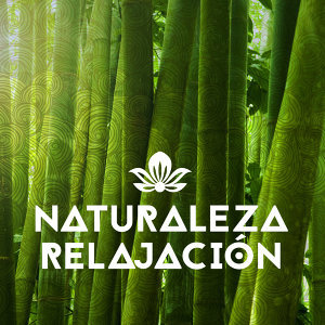 Nature Sound Series, Rest & Relax Nature Sounds Artists, Sonidos de la naturaleza Relajacion 歌手頭像