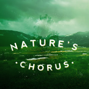 Nature Sound Collection, Nature Sounds, Sonidos de la naturaleza Relajacion 歌手頭像