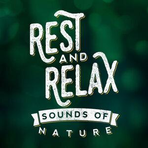 Sonidos de la naturaleza Relajacion, Rest & Relax Nature Sounds Artists, Sleep Sounds of Nature 歌手頭像