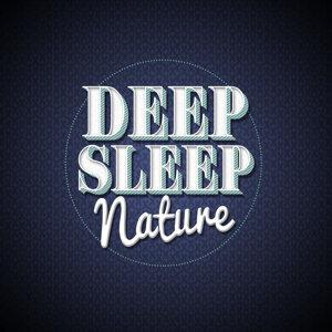 Deep Sleep Relaxation, Meditation Spa 歌手頭像