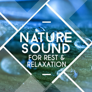 Nature Sound Series, Rest & Relax Nature Sounds Artists, Sleep Sounds of Nature 歌手頭像