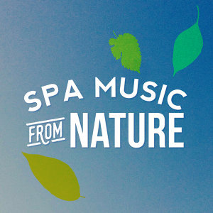 Spa, Relaxation and Dreams, Spa & Spa, Spa Music 歌手頭像