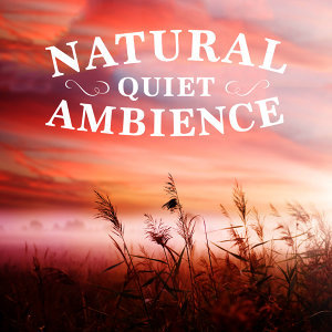 Sweet Baby Sleep Baby, Ambiance nature, Nature Sounds Radio 歌手頭像