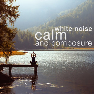 Zen Meditation and Natural White Noise and New Age, White Noise Masters