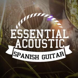 Acoustic Guitar, Acoustic Spanish Guitar, Guitar 歌手頭像