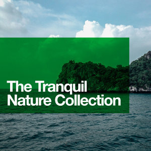 Nature Sound Collection, Nature Sound Series, Nature Sounds 歌手頭像