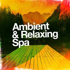 Ambient Meditation Music, New Age Spa Music, Oasis de Détente et Relaxation 歌手頭像