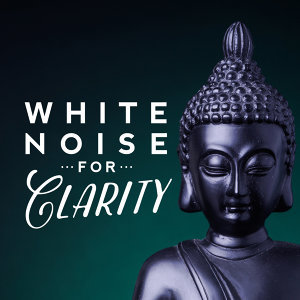 White Noise Therapy, White Noise Research 歌手頭像
