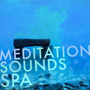 Deep Sleep Meditation, Mediation Sounds of Nature, Meditation Spa 歌手頭像