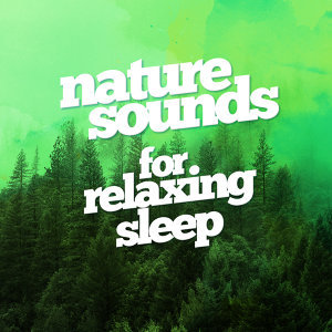 Nature Sounds Relaxation: Music for Sleep, Meditation, Massage Therapy, Spa, Nature Sounds for Sleep and Relaxation, Nature Sounds Nature Music 歌手頭像