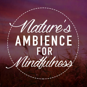 Ambiance nature, Sounds of Nature White Noise for Mindfulness, Meditation and Relaxation, Spa 歌手頭像