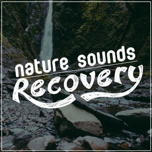 The Healing Sounds of Nature, Ambient Nature Sounds, Sleep Songs with Nature Sounds 歌手頭像