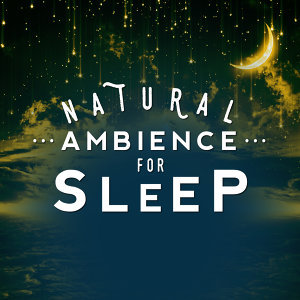 Sleep Sounds of Nature & Natural Sounds, Ambient Nature Sounds, Nature Sounds Relaxing 歌手頭像