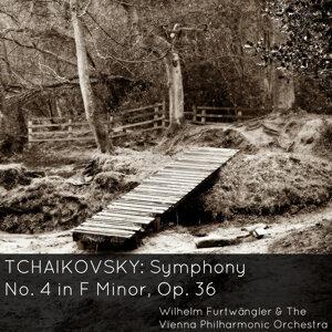 The Vienna Philharmonic Orchestra, Wilhelm Furtwängler 歌手頭像