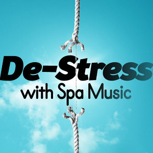 Stress Relief, Spa Music Collection, Spa Music Relaxation Meditation 歌手頭像