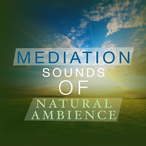 Sound Library XL, Mediation Sounds of Nature, Nature Ambience 歌手頭像