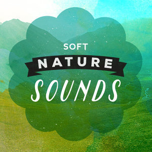 Nature Sound Series, Nature Sounds, Sleep Sounds of Nature 歌手頭像