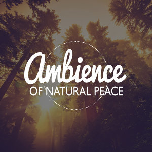 Sounds of Nature Relaxation, Nature Ambience 歌手頭像
