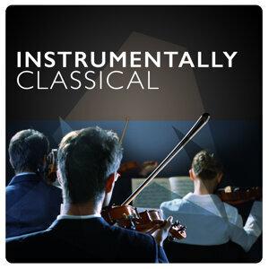 Instrumental, Instrumental Love Songs, Musique Classique 歌手頭像