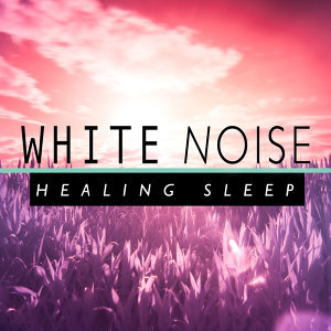 White Noise Research, Natural White Noise for Sleep, Relaxation, Spa and Healing, Newborn Babies Natural White Noise 歌手頭像