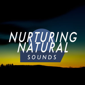 Sounds of Nature Relaxation, Sleep Music with Nature Sounds Relaxation, Sleep Songs with Nature Sounds 歌手頭像