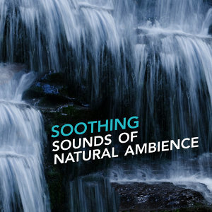 Relaxing Nature Sounds, Nature Sounds Relaxing 歌手頭像