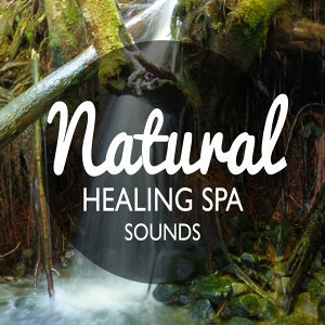 Green Nature SPA, Healing Sounds for Deep Sleep and Relaxation, Sonidos de la naturaleza Relajacion 歌手頭像
