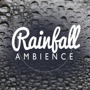 Ambient Rain, Rain for Deep Sleep, Relaxing Sounds of Nature 歌手頭像