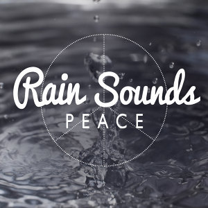 Baby Sleep, Sounds Of Nature : Thunderstorm, Rain, Sounds of Nature White Noise Sound Effects 歌手頭像