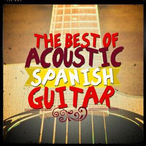 The Acoustic Guitar Troubadours, Guitarra Española, Spanish Guitar, Instrumental Guitar Music 歌手頭像