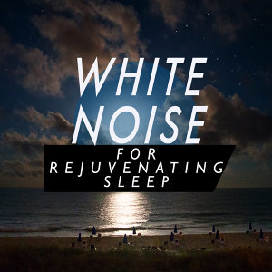White Noise Babies, Newborn Babies Natural White Noise 歌手頭像
