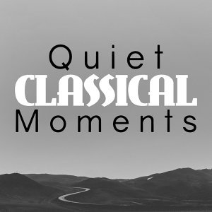 Quiet Moments, Reading and Study Music, Relaxation Study Music 歌手頭像