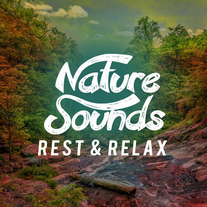 Rest & Relax Nature Sounds Artists, Nature Sound Collection, Nature Sounds Relaxing 歌手頭像