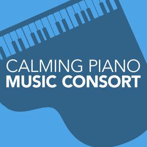 Beethoven Consort, Calming Piano Music, Easy Listening Piano 歌手頭像