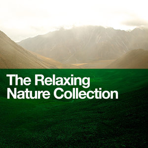Bruits naturels, Exam Study Nature Music Nature Sounds, Green Nature SPA 歌手頭像