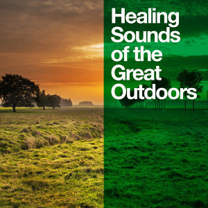 Healing Sounds for Deep Sleep and Relaxation, Natural Sounds, Nature Ambience 歌手頭像
