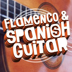 Guitarra Clásica Española, Spanish Classic Guitar, Flamenco Guitar Masters, Guitare Flamenco 歌手頭像