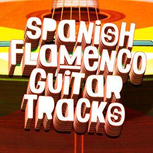 Spanish Guitar Music, Guitar Tracks, Guitare Flamenco 歌手頭像