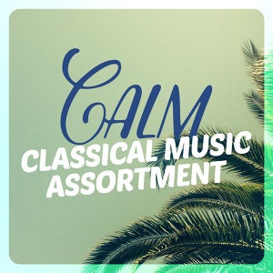 Calm Music for Studying, Classical Music Radio, Easy Listening Piano 歌手頭像