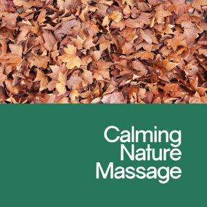 Massage Tribe, Natural Sounds, Sonidos de la naturaleza Relajacion 歌手頭像