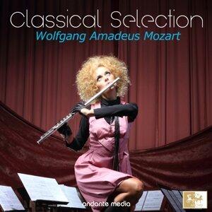 Mozart Festival Orchestra, Slovak Philharmonic Orchestra, Camerata Labacensis 歌手頭像