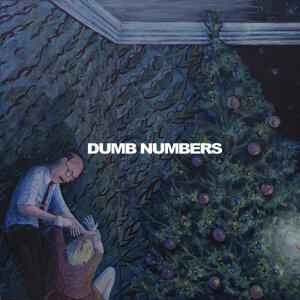 Dumb Numbers