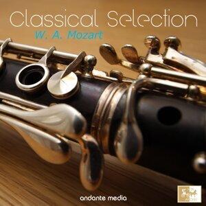 Paul Kantschieder, Mozart Festival Orchestra, Capella Istropolitana 歌手頭像