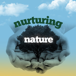 Sonidos de la naturaleza Relajacion Sounds of Nature White Noise for Mindfulness Meditation and Relaxation 歌手頭像