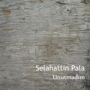 Selahattin Pala 歌手頭像