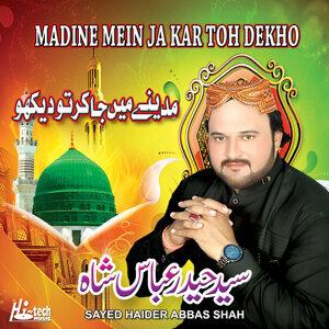 Sayed Haider Abbas Shah 歌手頭像