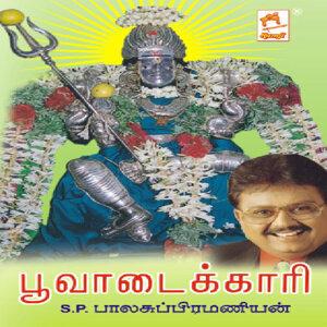S.P.Balasubramanian 歌手頭像