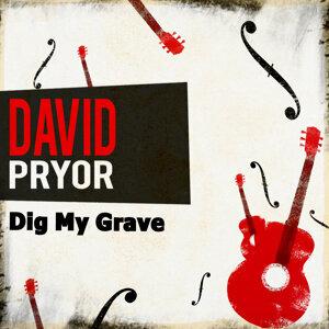 David Pryor 歌手頭像