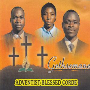 Adventist Blessed Corde 歌手頭像