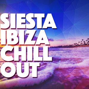 Chill, Sexy Music Ibiza Playa del Mar DJ, Siesta del Mar 歌手頭像